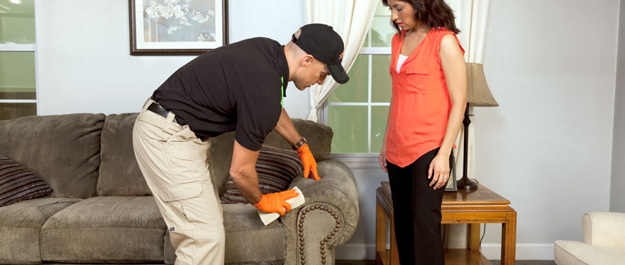 Baton Rouge, LA carpet upholstery cleaning